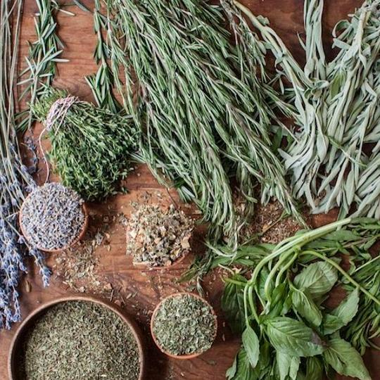 Plantio orgânico